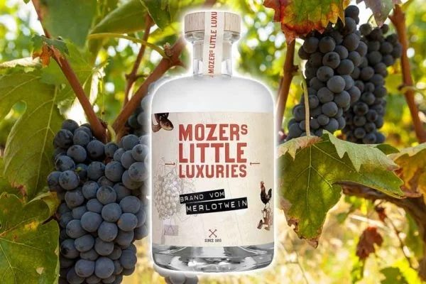 A Bottle of Merlot Wine Brandy From Mozers Spirits With Merlot Wine Grapes in the Background